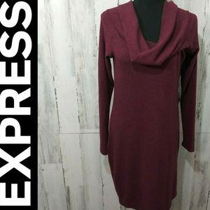 🎄Express cowl neck tunic/dress L